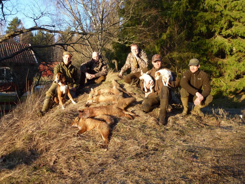 Nöjda hundar och jägare med helgens resultat
