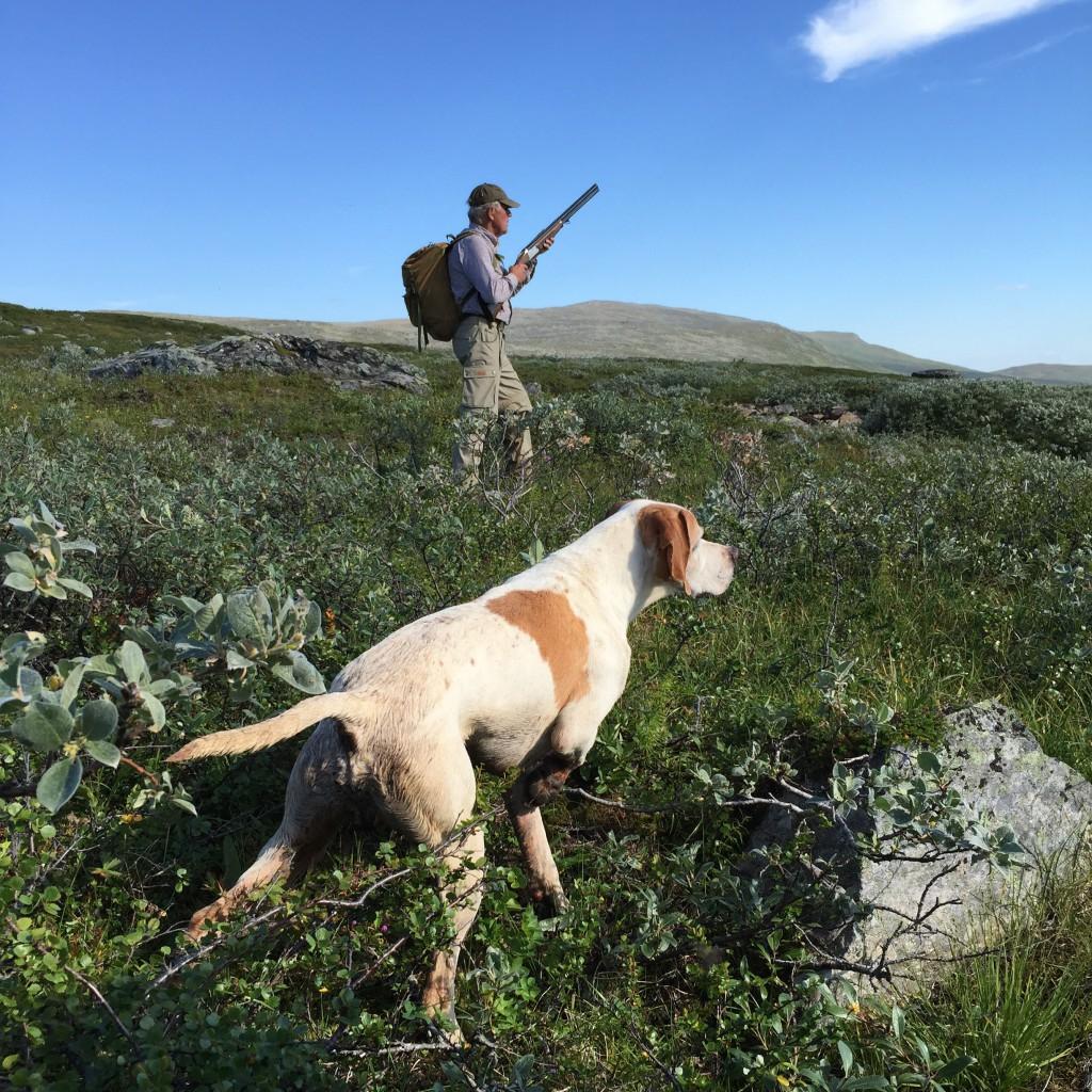 Epson har spikat fågel och Johan är redo med bössan.