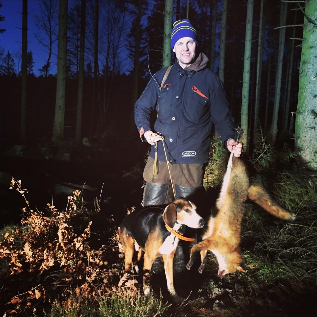 Johan förpassade räv nr. 170 för Banjo till de sälla jaktmarkerna.